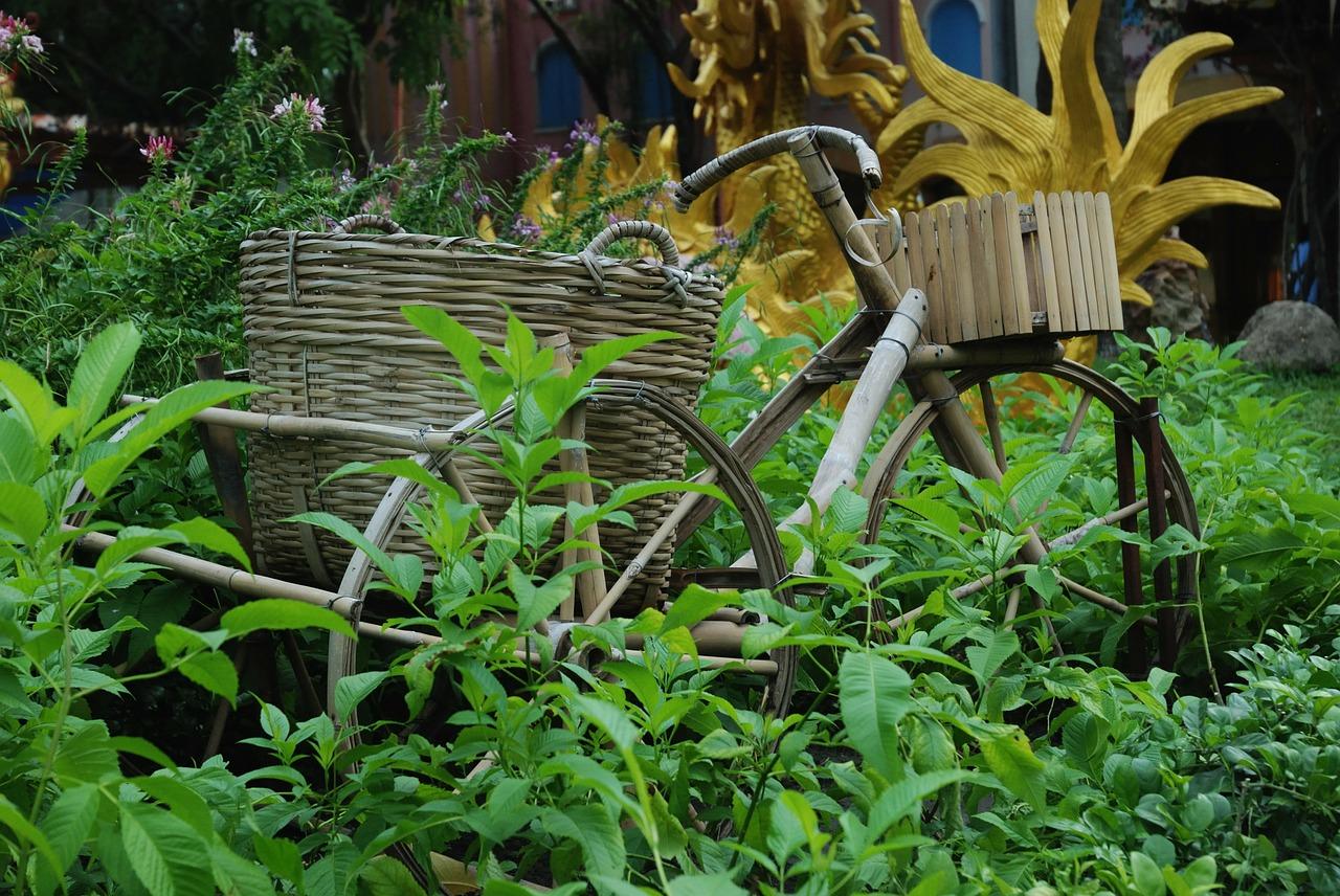 מיסטיקה או רציונאליות: כיצד ניתן להסביר את צריכת החשמל הנמוכה של אופניים חשמליים מבמבוק?